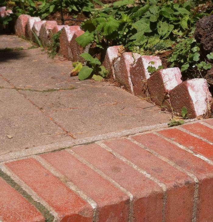 700_my-garden-walk