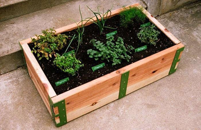 700_patio-garden-01