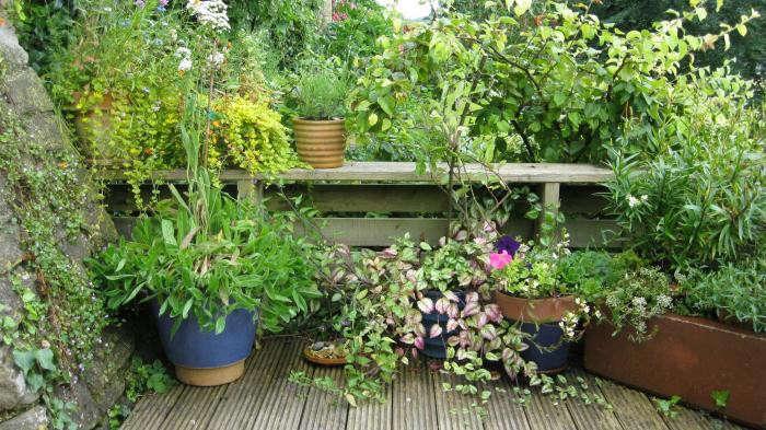 700_ruth-terrace-garden-5