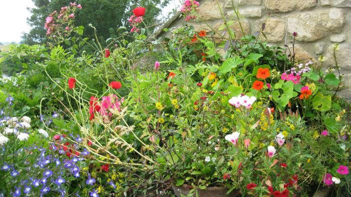 700_ruth-terrace-garden-8