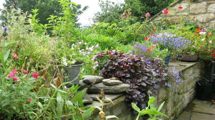 700_ruth-terrace-garden-9