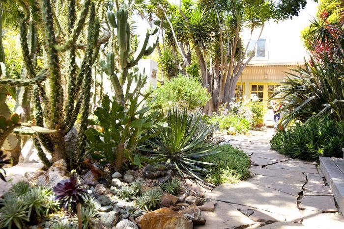 Inside The Secret Gardens Of Venice California Gardenista