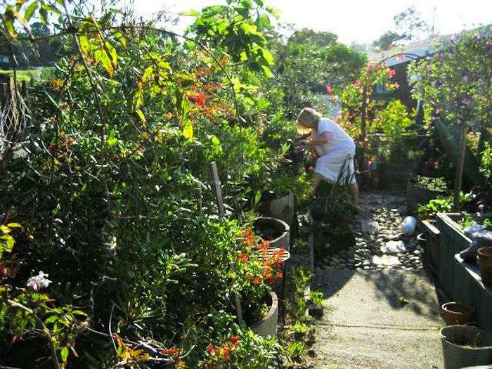 700_14-tricia-in-garden