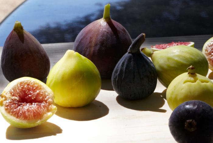 700_figs-11