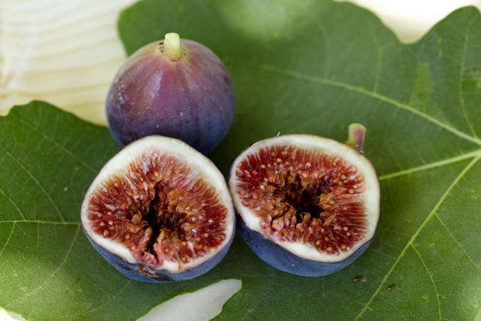 700_figs-4