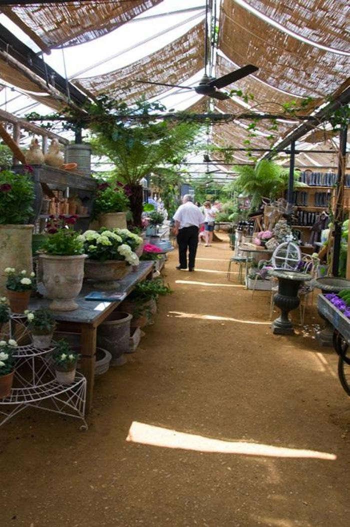700_petersham-nurseries-69