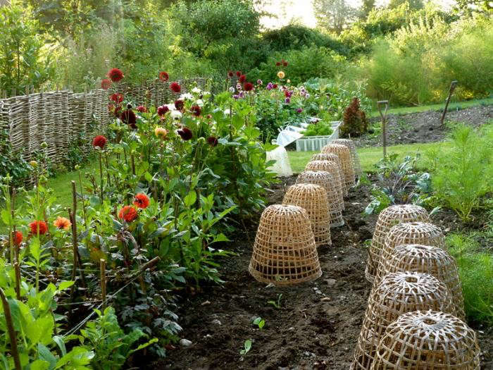 700_remodelista-ben-pentreath-fall-garden-07