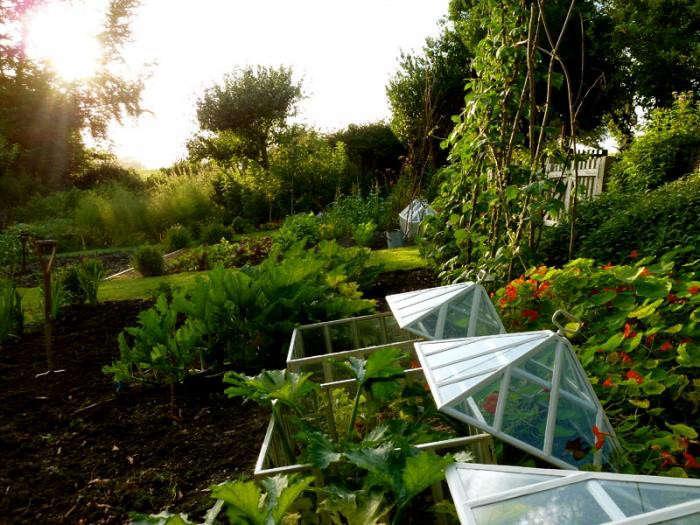 700_remodelista-ben-pentreath-fall-garden-09