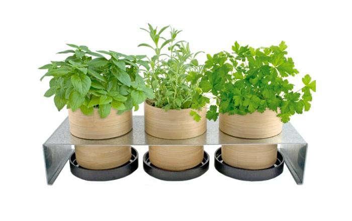 700_bamboo-grow-pot-rack-herbs