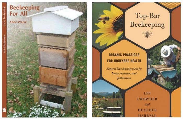 700_bee-thinking-bee-books