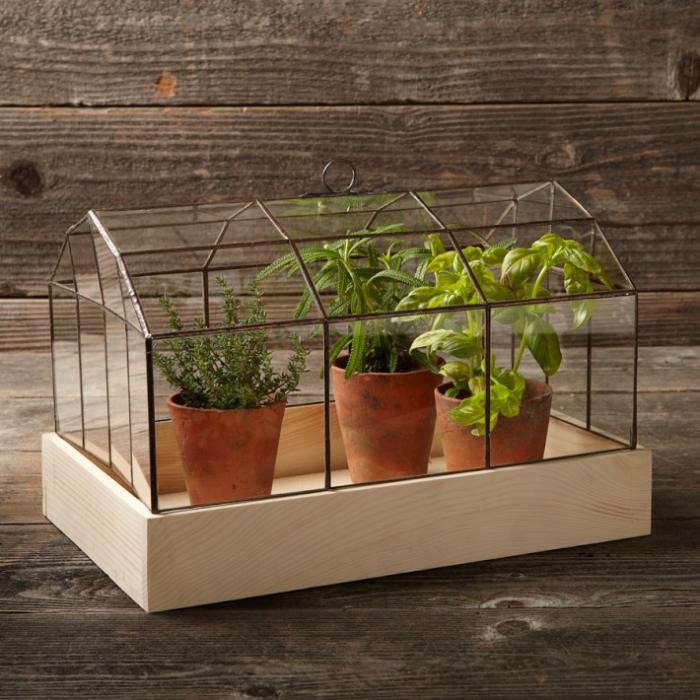 700_copper-glass-terrarium-plants