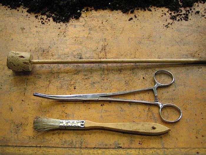 700_homemade-terrarium-tools