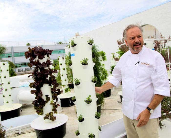 700_playa-rivera-rooftop-garden-chef-john-sedlar-22