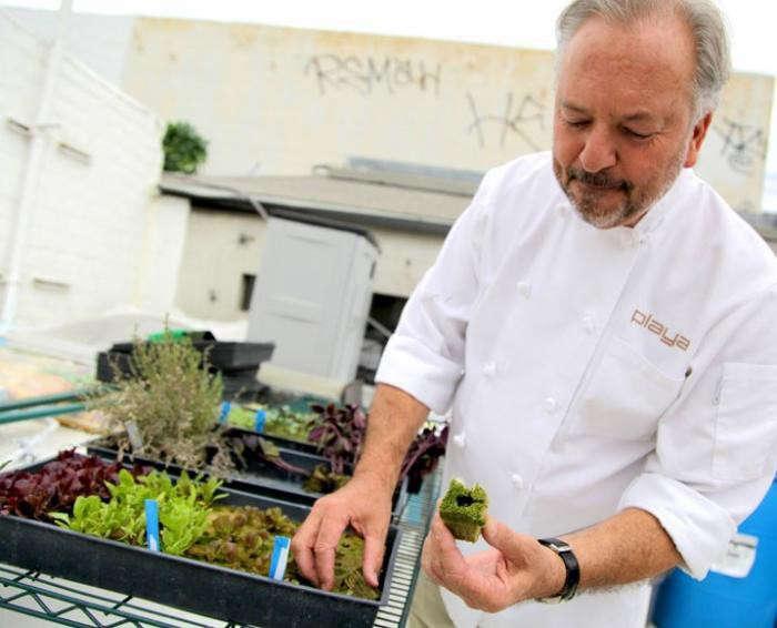 700_playa-rivera-rooftop-garden-chef-john-sedlar-4