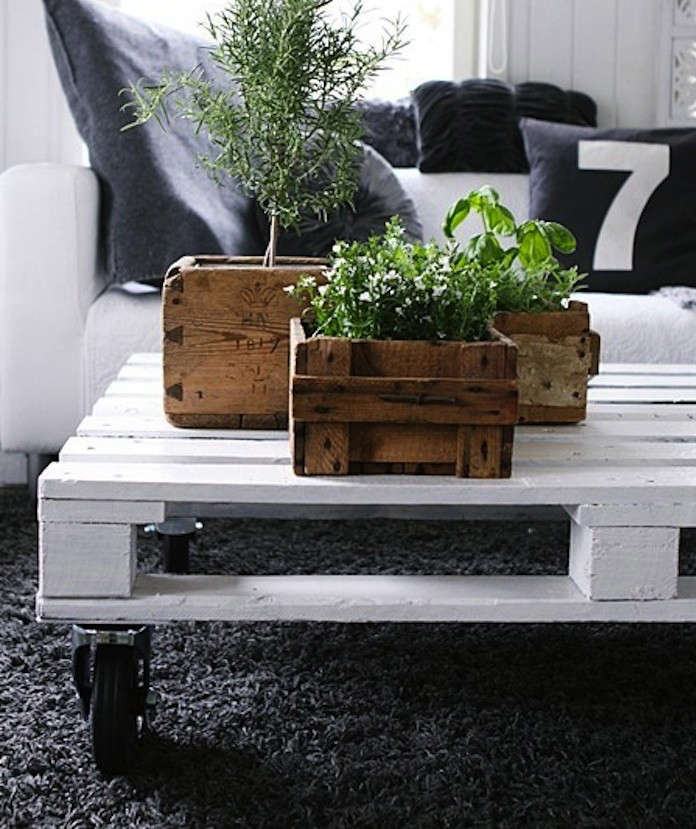 plants-in-boxes-new