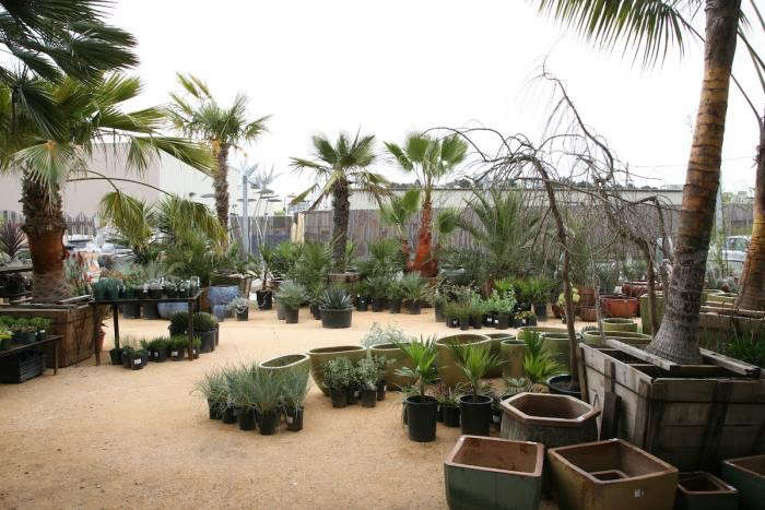 700_flora-grubb-courtyard-view