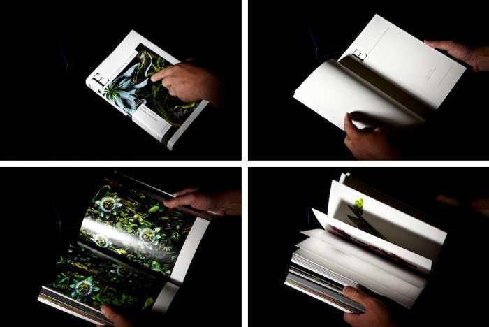 700_flower-encyclopedia-four-images-1