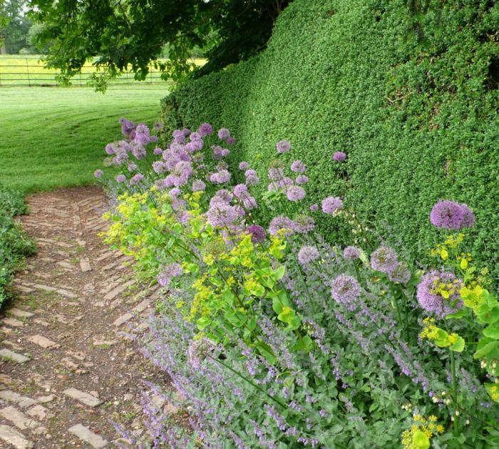 700_kelmarsh-hedge-path