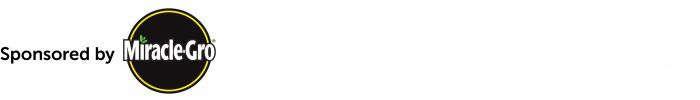 700_scotts-article-new-logo