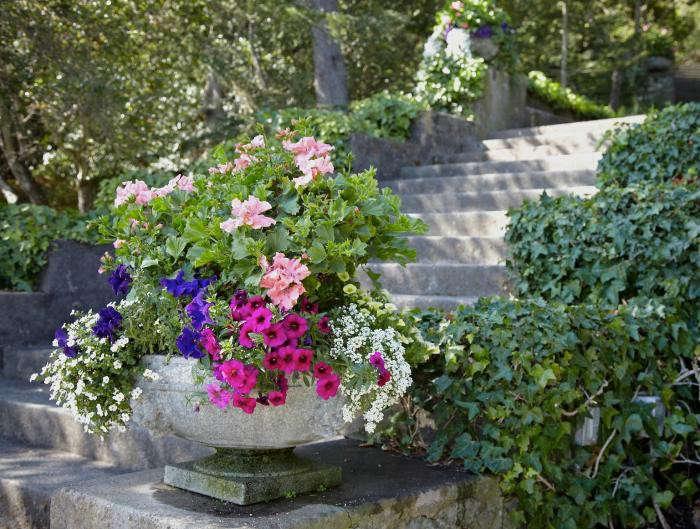 700_tiburon-garden-planter
