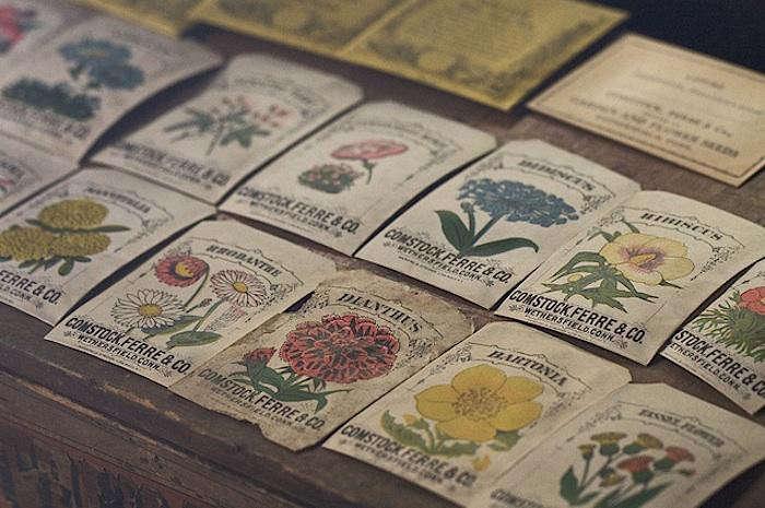 700_comstock-ferre-flower-seeds