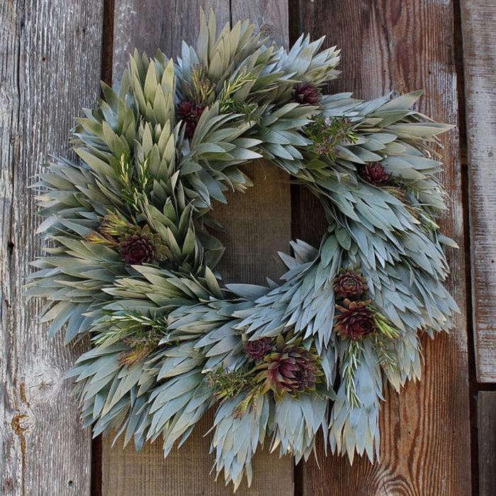 700_flora-grub-silvery-wreath