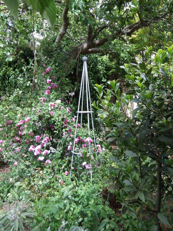 iron art of bath obelisk plant support