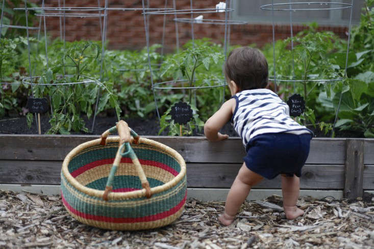 kids garden by christine chitnis 6