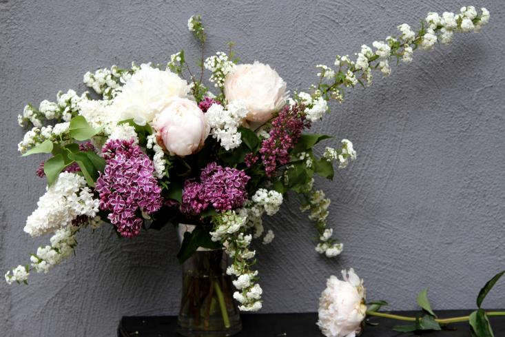 lilacs peonies and spirea