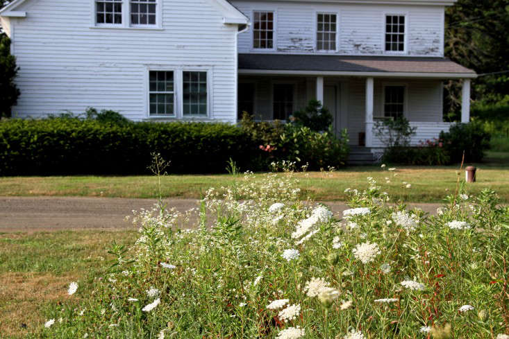 farmhouse-queen-annes-lace-meadow-lawn-gardenista