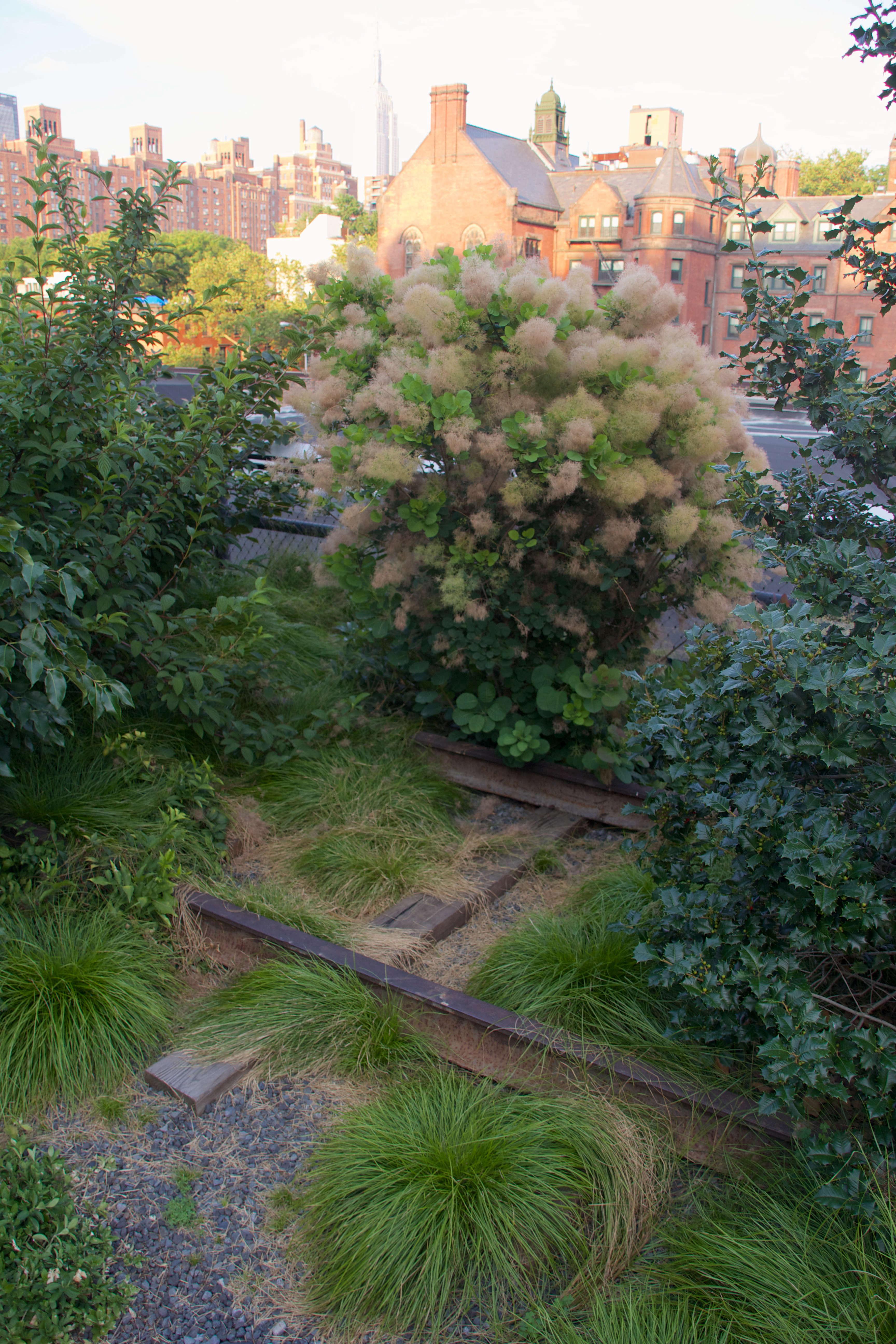 New Garden Ideas 2015 best new garden ideas ideas - home decorating ideas and interior