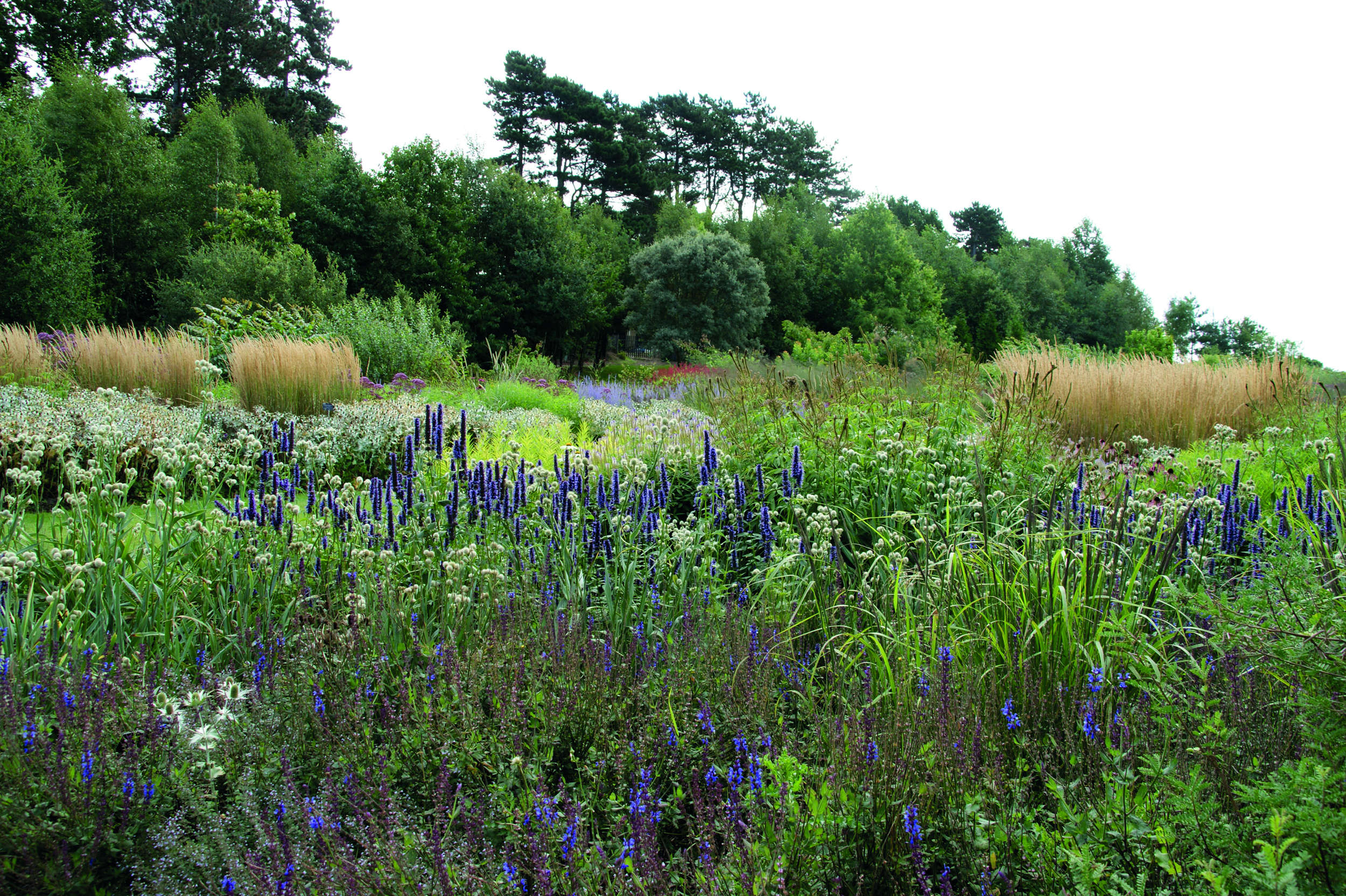 Plant By Numbers Garden Design planting design tips Above Oudolf Takes Design Inspiration From Natural Landscapes Where Plants Can Be Thought Of Occupying A Limited Number Of Physical Layers Within A
