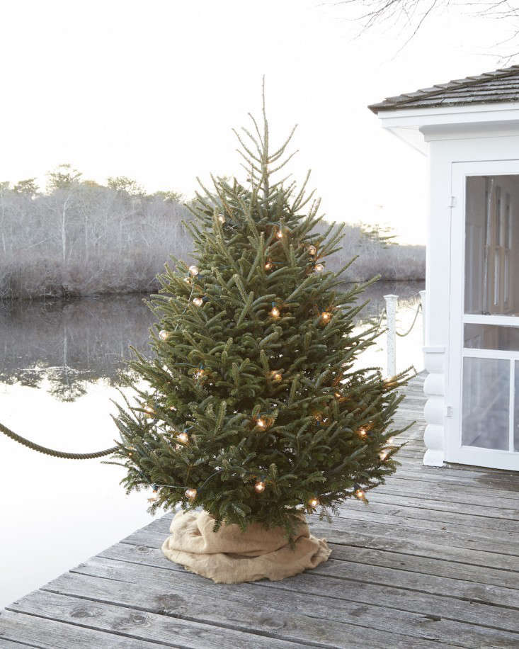 Tricia Foley Burlap Wrapped Christmas Tree Stand | Remodelista