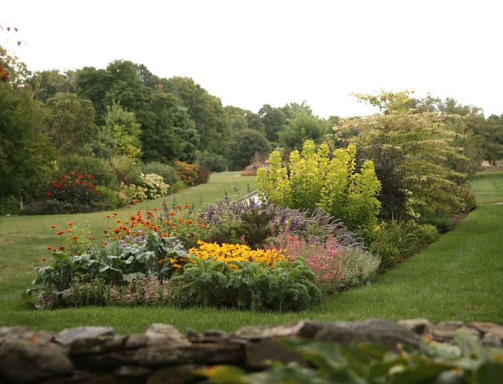 Flower borders 10 essential tips from white flower farms barb flower borders 10 essential tips from white flower farms barb pierson gardenista mightylinksfo