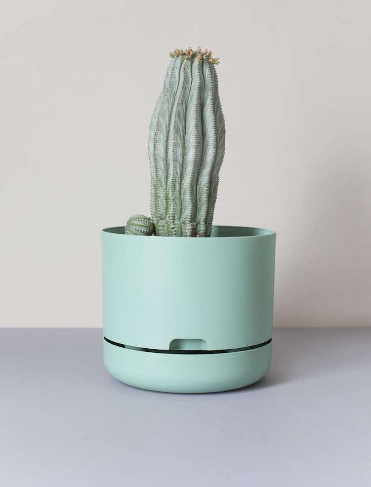 self-watering-planter-green-everyday-eeds-gardenista