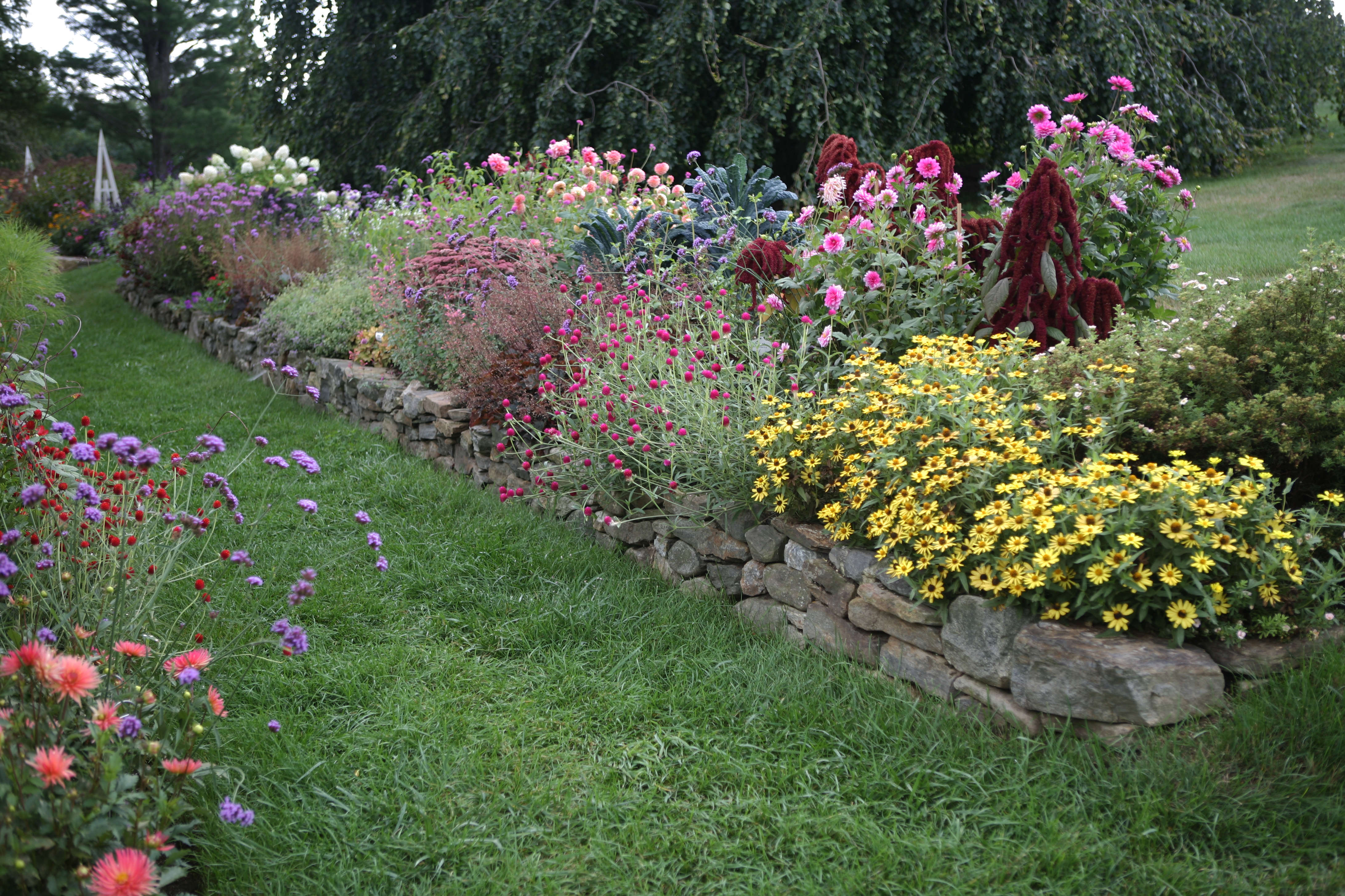 Flower borders 10 essential tips from white flower farm39s for Flower garden borders