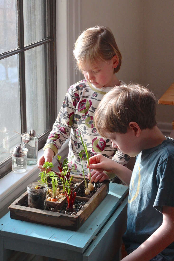 Compost Garden and kids-733x1100