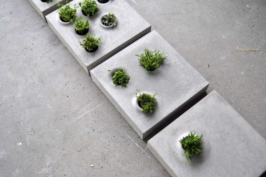 From Gray To Green Pavers With Plants From Stockholm