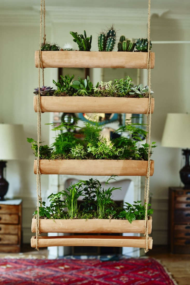 Mix And Match Make Your Own Miniature Hanging Garden
