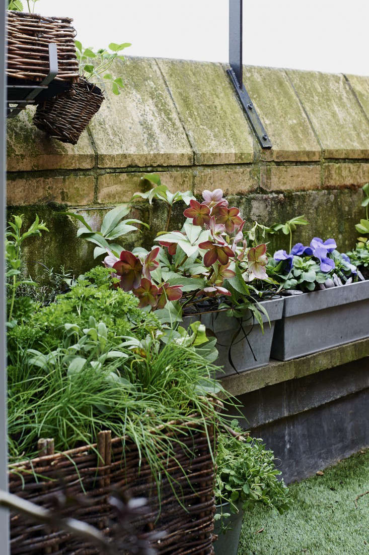 Ask the expert 10 tips to transform a tiny balcony into - Jonathan s restaurant garden city ...