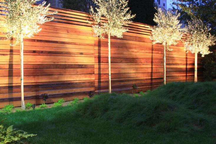 Hardscaping 101 landscape uplighting gardenista for Architectural landscape lighting