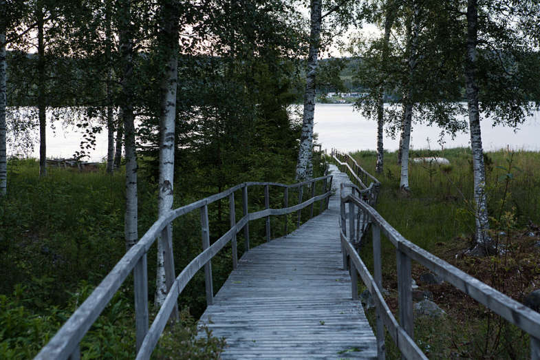 Sagverket-swedish-hostel-birch-path-Remodelista