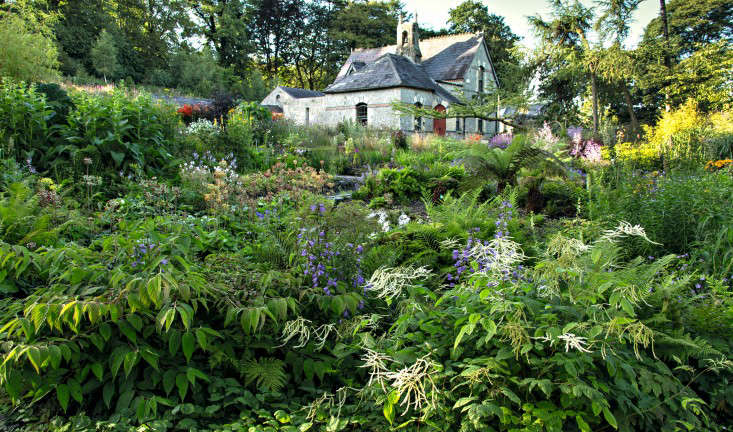 Required reading the irish garden gardenista for Country garden designs ireland
