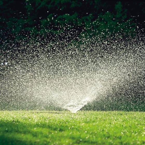 ground-sprinkler-spray-lawn-gardenista