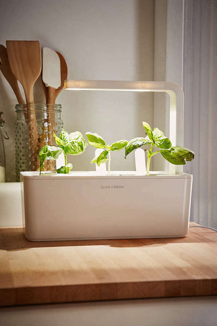 Countertop Herb Garden Kit : ... and Grow: A Miniature Herb Garden for a Kitchen Countertop: Gardenista