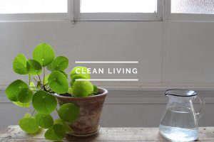 CleanLivingTOC_1