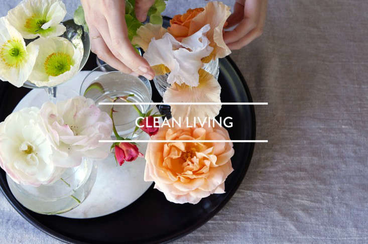 toc-clean-living-gardenista