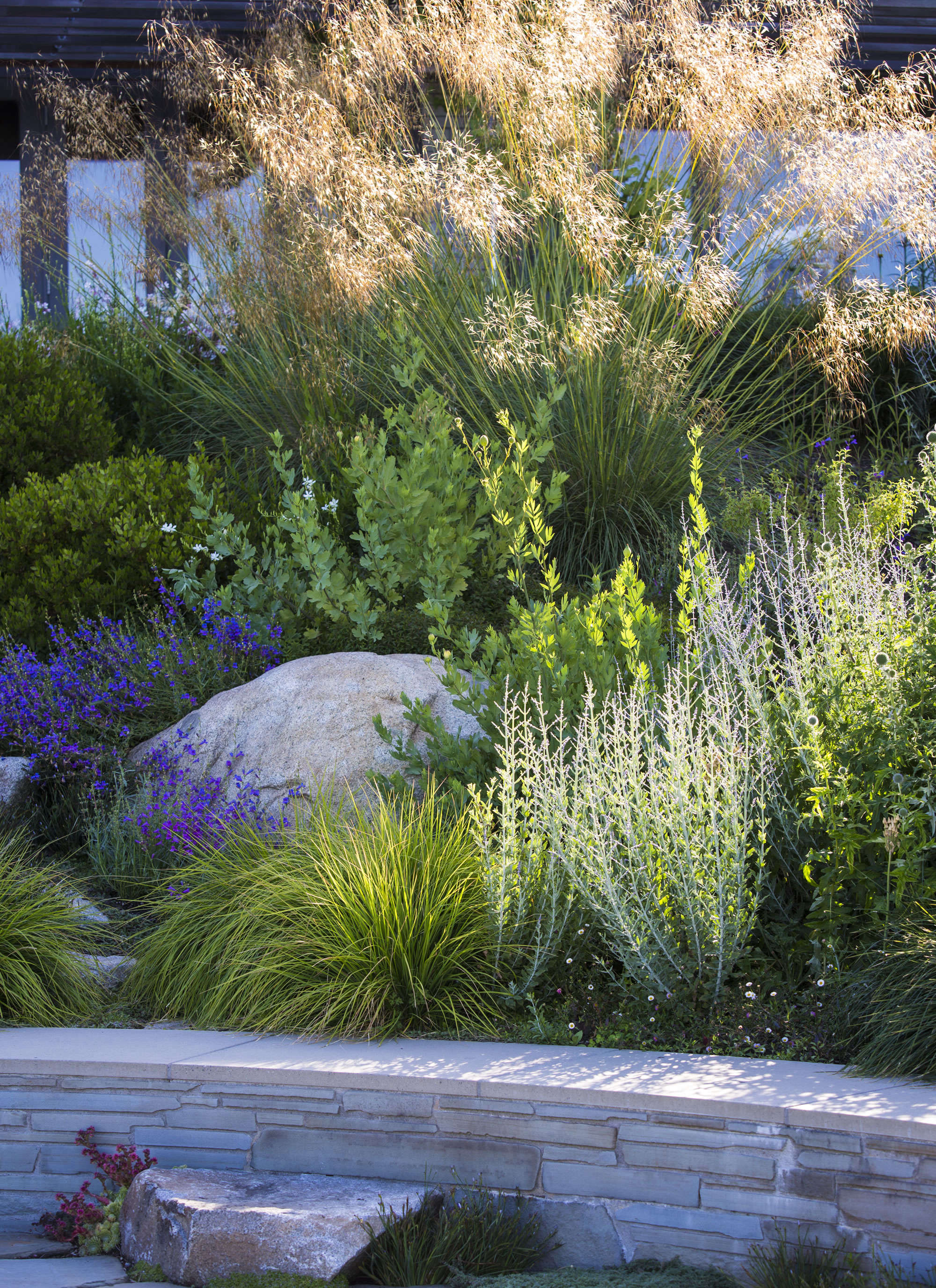 Sneak peek garden design magazine 39 s wild gardens gardenista for Garden design planting schemes