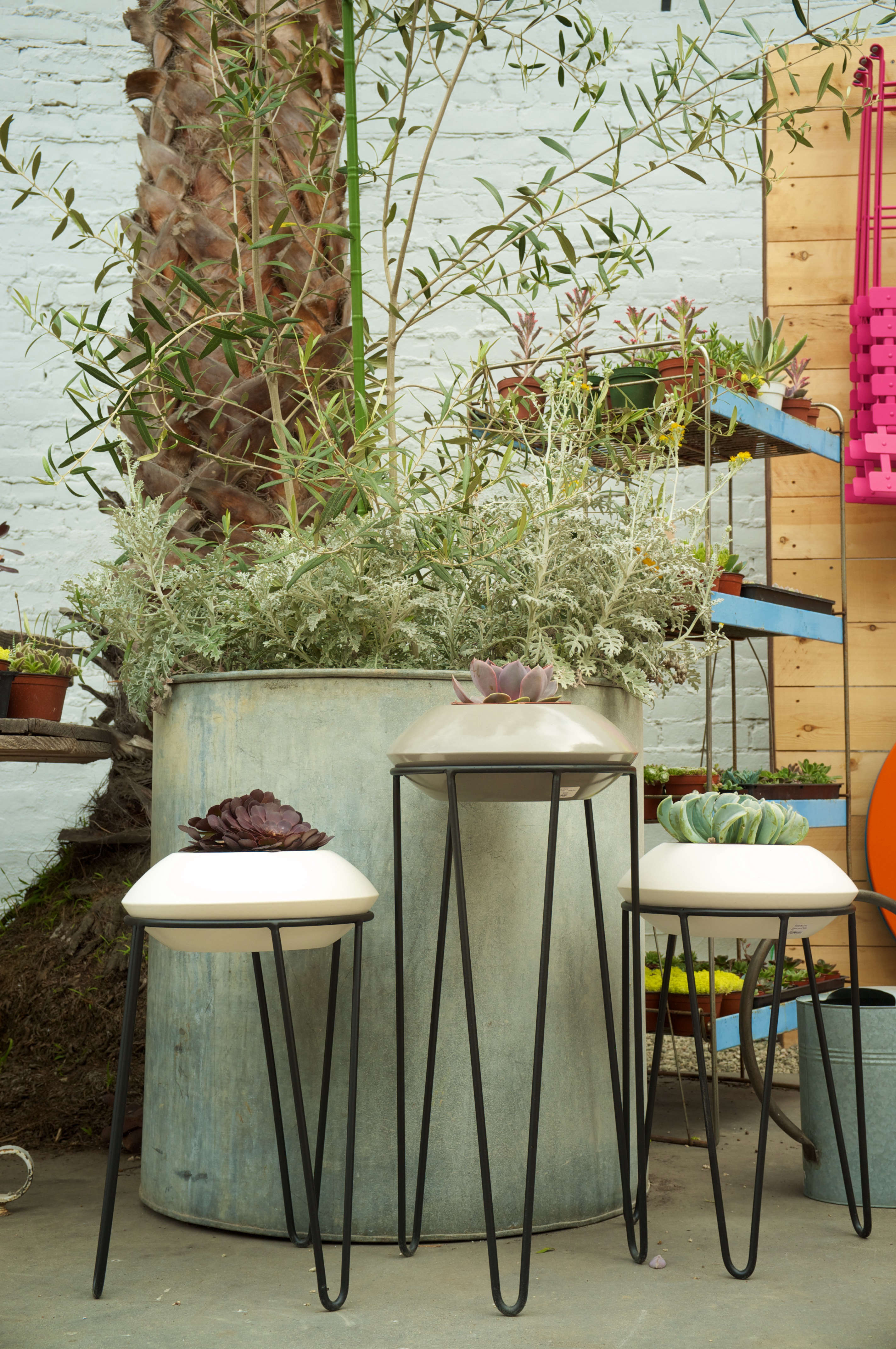 Shopper S Diary New Outpost For Potted In Santa Monica