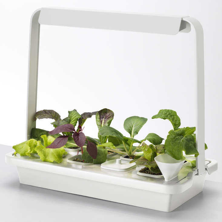 Countertop Herb Garden Kit : New from Ikea: A Hydroponic Countertop Garden Kit Gardenista ...